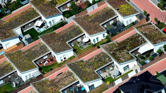 Ein Blick auf die Wohnungspolitik: Neubausiedlung in Hannover